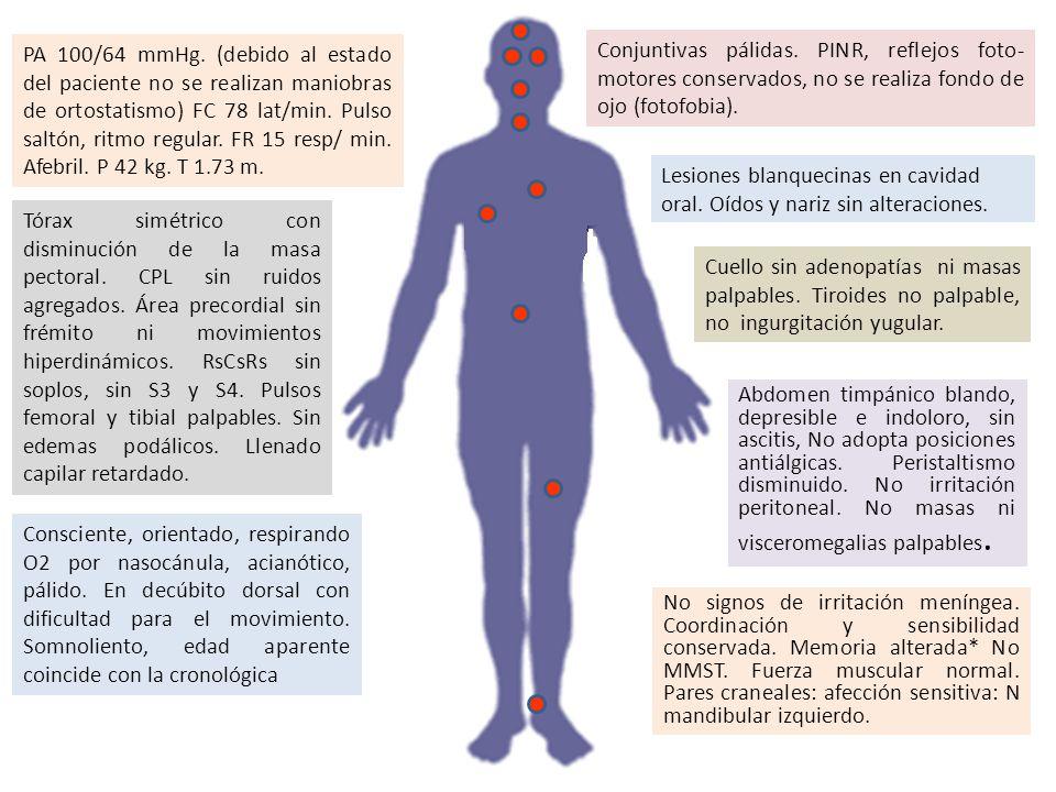 PA 100/64 mmHg. (debido al estado del paciente no se realizan maniobras de ortostatismo) FC 78 lat/min. Pulso saltón, ritmo regular. FR 15 resp/ min. Afebril. P 42 kg. T 1.73 m.