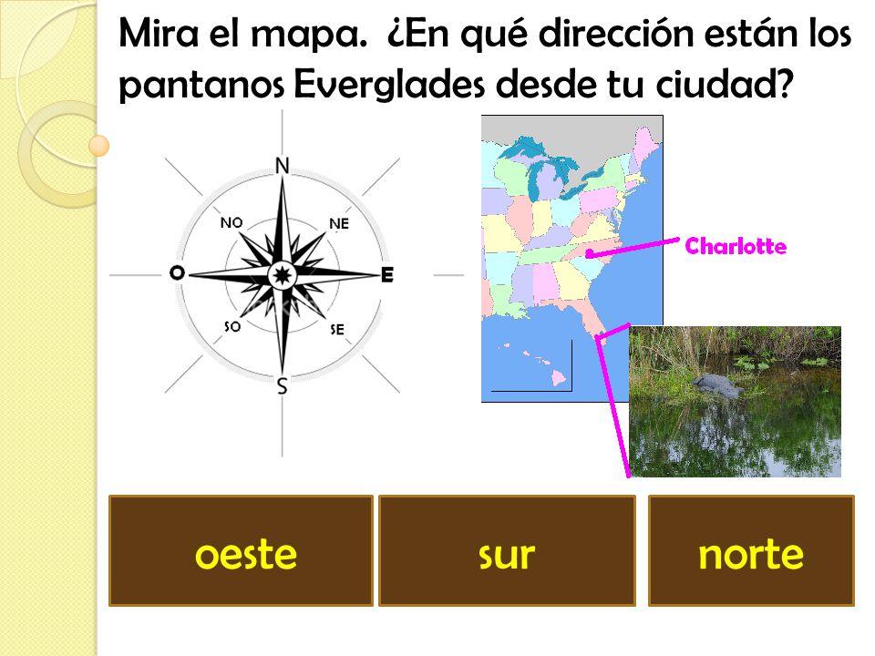 Mira el mapa. ¿En qué dirección están los pantanos Everglades desde tu ciudad