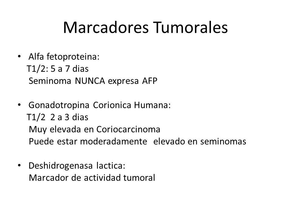 Marcadores Tumorales Alfa fetoproteina: T1/2: 5 a 7 dias