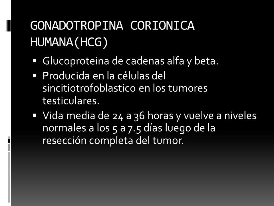 GONADOTROPINA CORIONICA HUMANA(HCG)