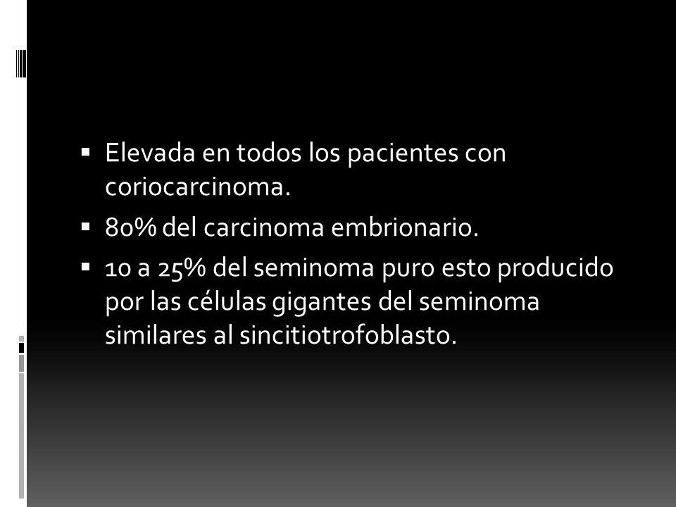 Elevada en todos los pacientes con coriocarcinoma.