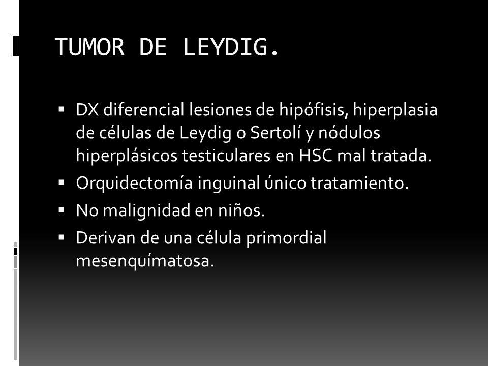 TUMOR DE LEYDIG.