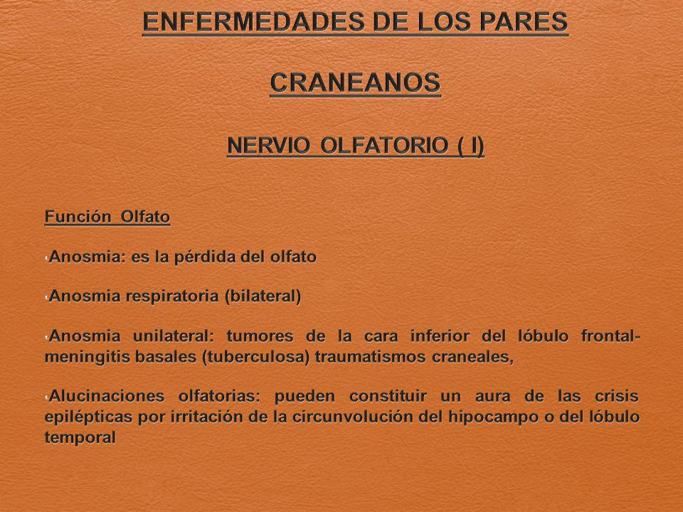 ENFERMEDADES DE LOS PARES CRANEANOS NERVIO OLFATORIO ( I)