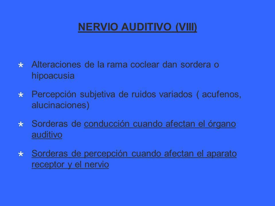NERVIO AUDITIVO (VIII)