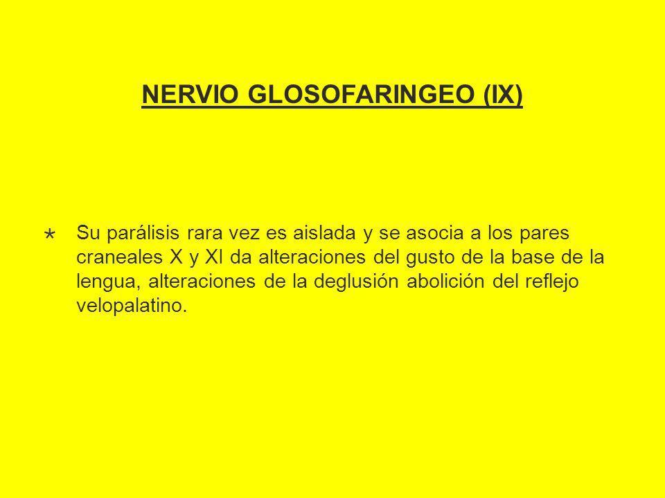 NERVIO GLOSOFARINGEO (IX)
