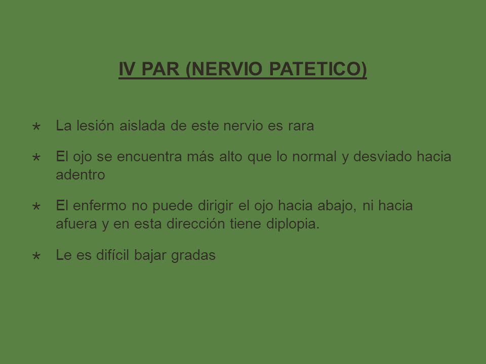 IV PAR (NERVIO PATETICO)
