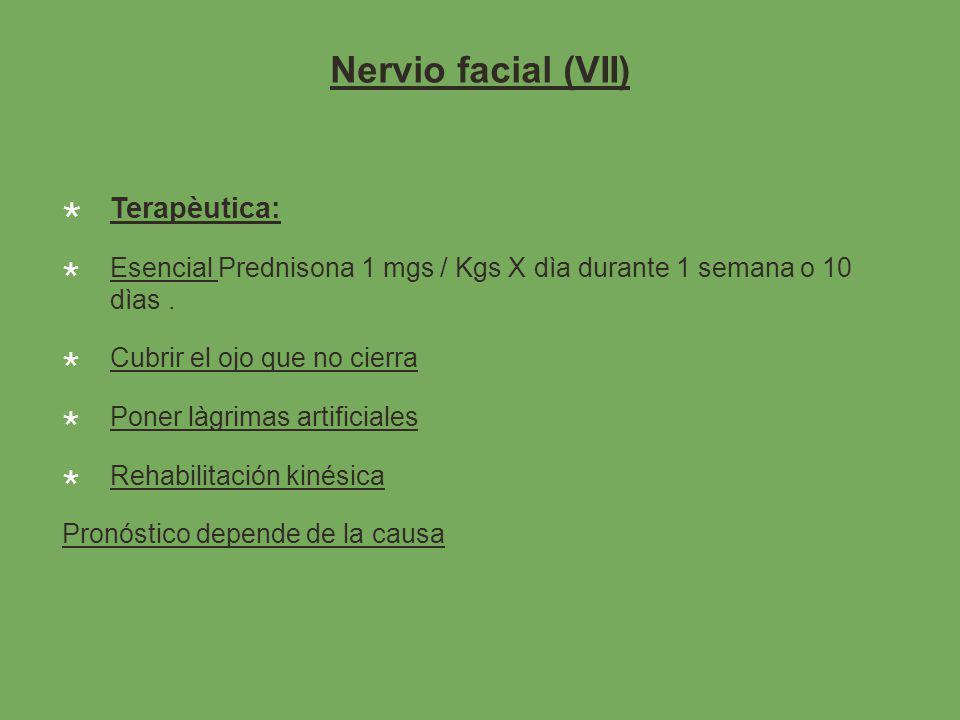 Nervio facial (VII) Terapèutica:
