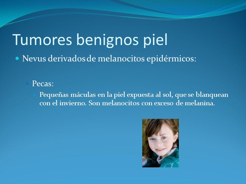 Tumores benignos piel Nevus derivados de melanocitos epidérmicos: