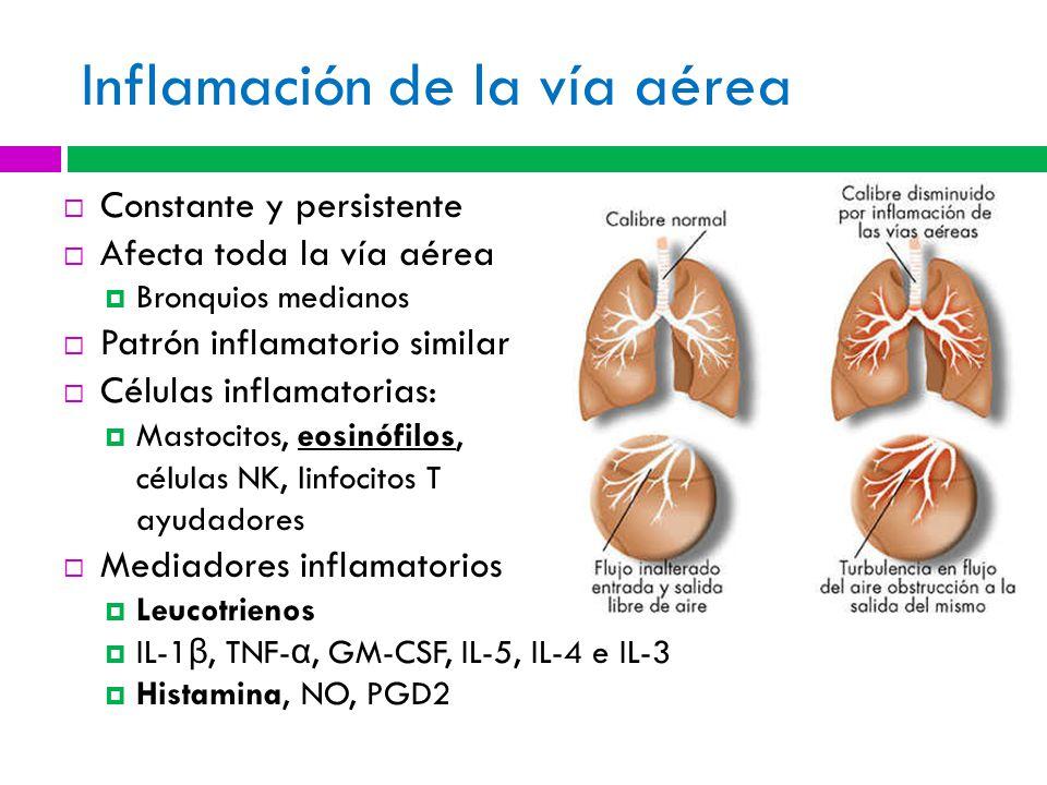 Inflamación de la vía aérea