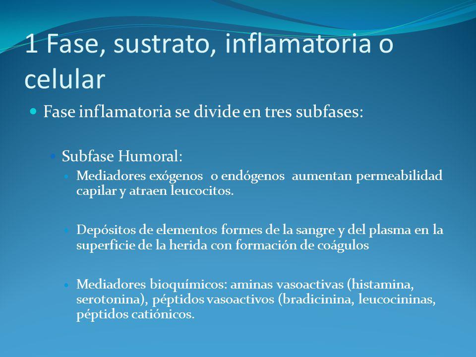 1 Fase, sustrato, inflamatoria o celular