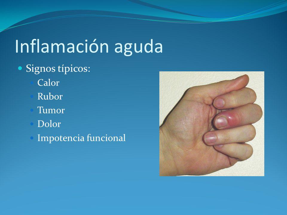 Inflamación aguda Signos típicos: Calor Rubor Tumor Dolor