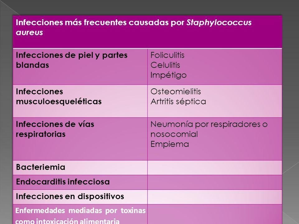 Infecciones más frecuentes causadas por Staphylococcus aureus