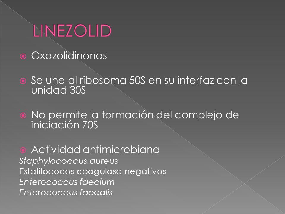 LINEZOLID Oxazolidinonas