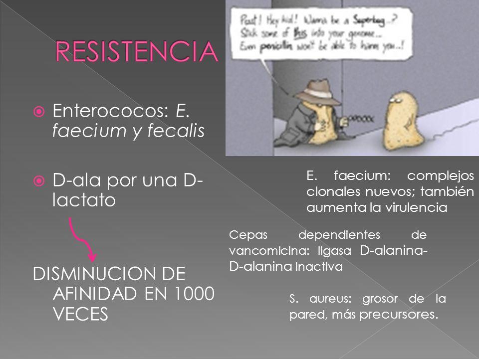 RESISTENCIA Enterococos: E. faecium y fecalis D-ala por una D-lactato