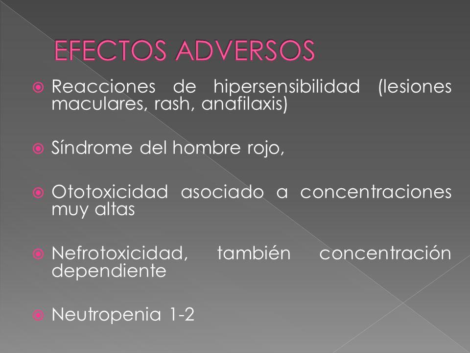 EFECTOS ADVERSOS Reacciones de hipersensibilidad (lesiones maculares, rash, anafilaxis) Síndrome del hombre rojo,