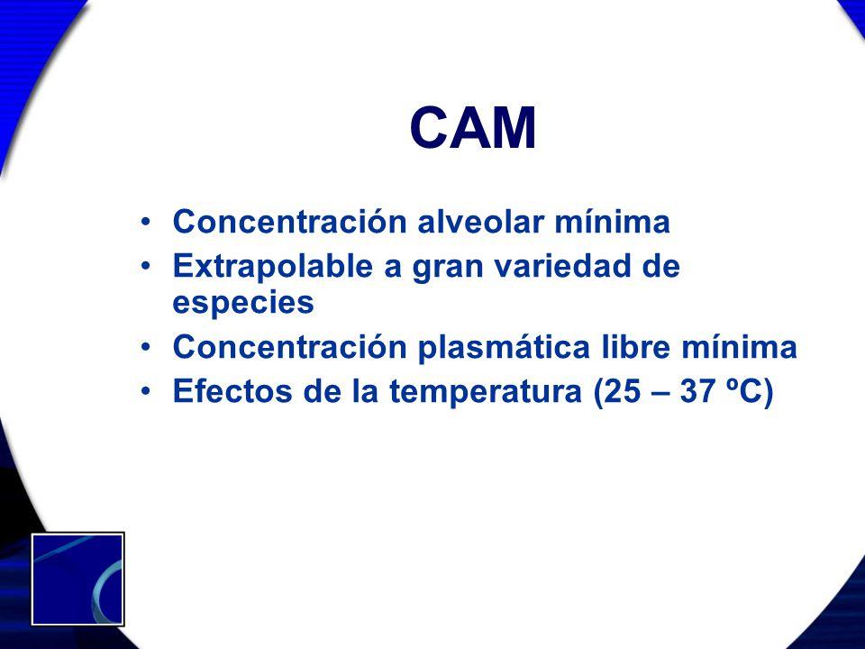 CAM Concentración alveolar mínima