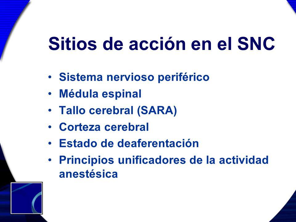 Sitios de acción en el SNC