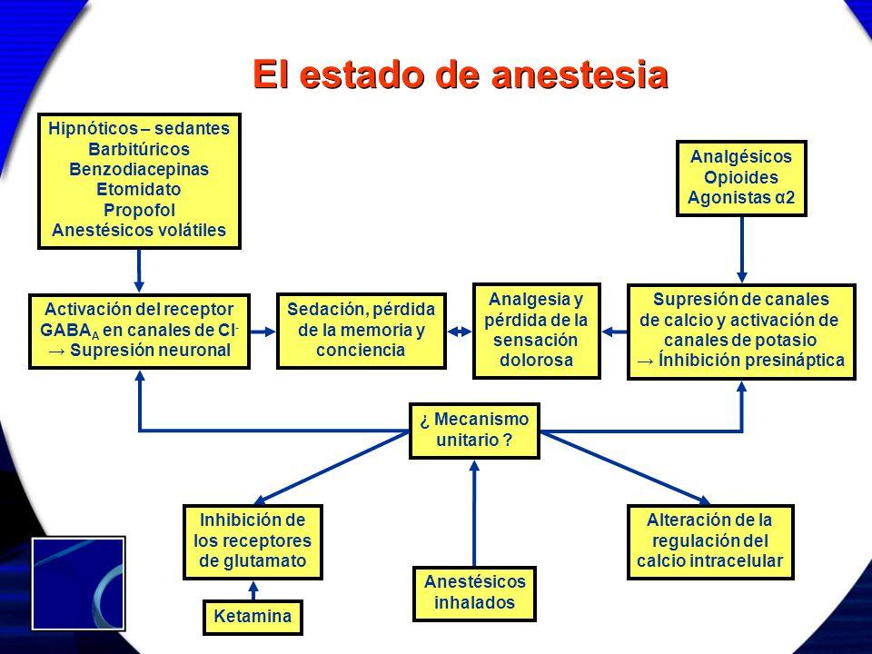 El estado de anestesia Hipnóticos – sedantes Barbitúricos