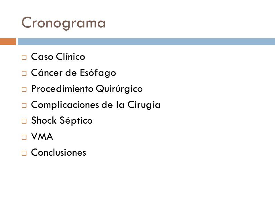 Cronograma Caso Clínico Cáncer de Esófago Procedimiento Quirúrgico
