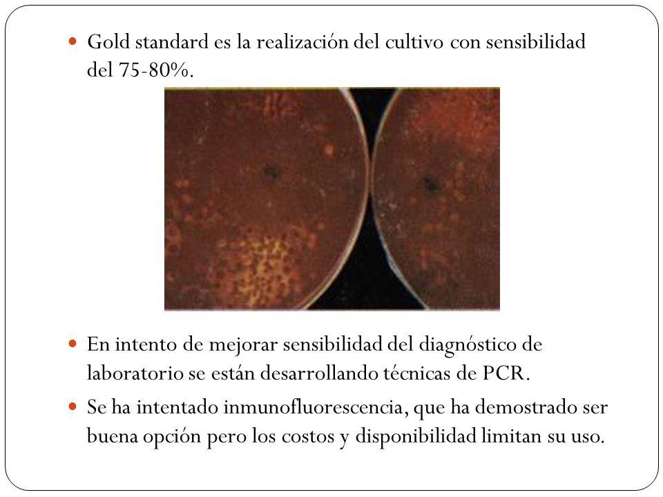 Gold standard es la realización del cultivo con sensibilidad del 75-80%.