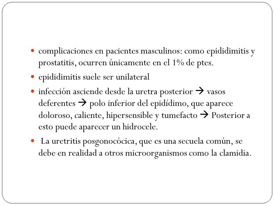 complicaciones en pacientes masculinos: como epididimitis y prostatitis, ocurren únicamente en el 1% de ptes.