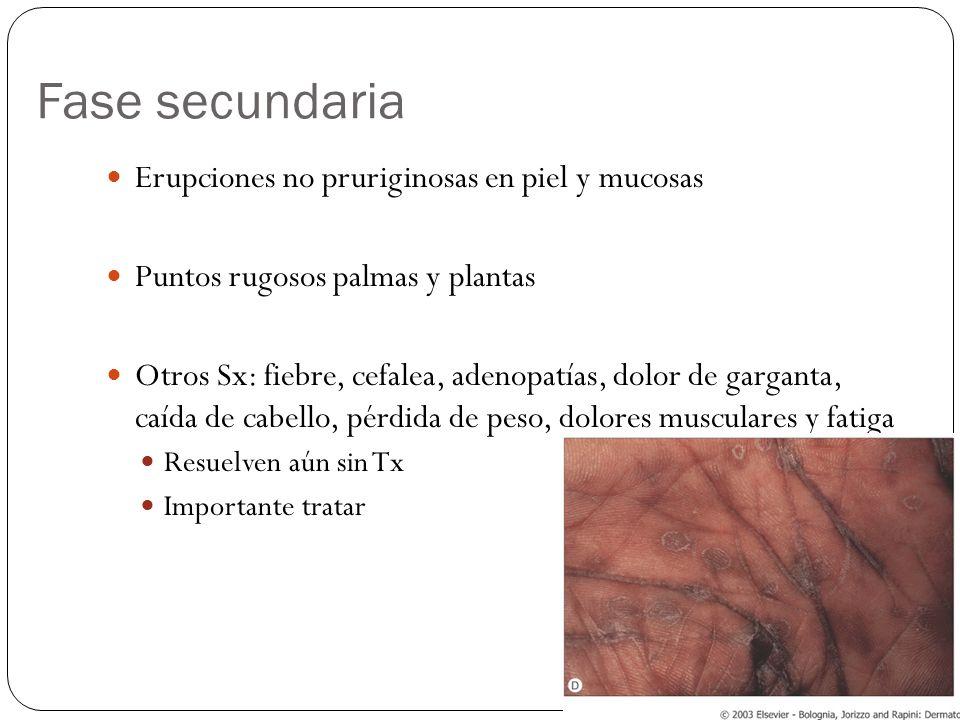 Fase secundaria Erupciones no pruriginosas en piel y mucosas
