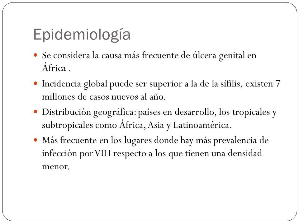 Epidemiología Se considera la causa más frecuente de úlcera genital en África .