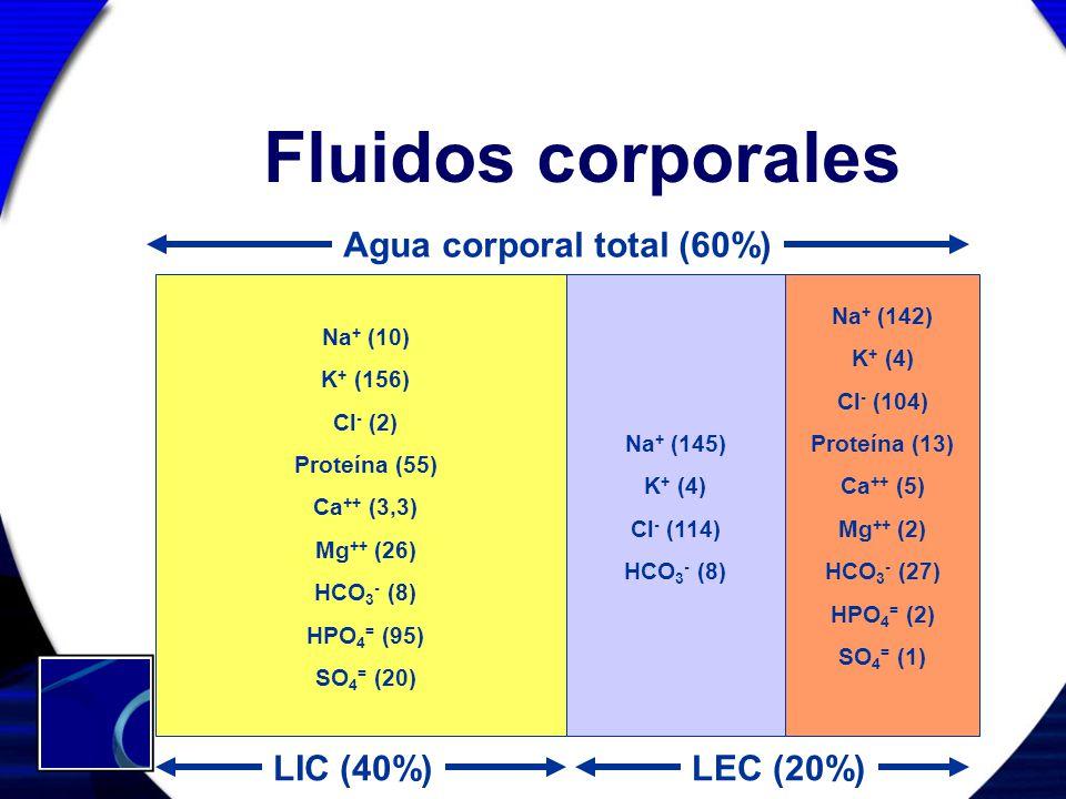Fluidos corporales Agua corporal total (60%) LIC (40%) LEC (20%)