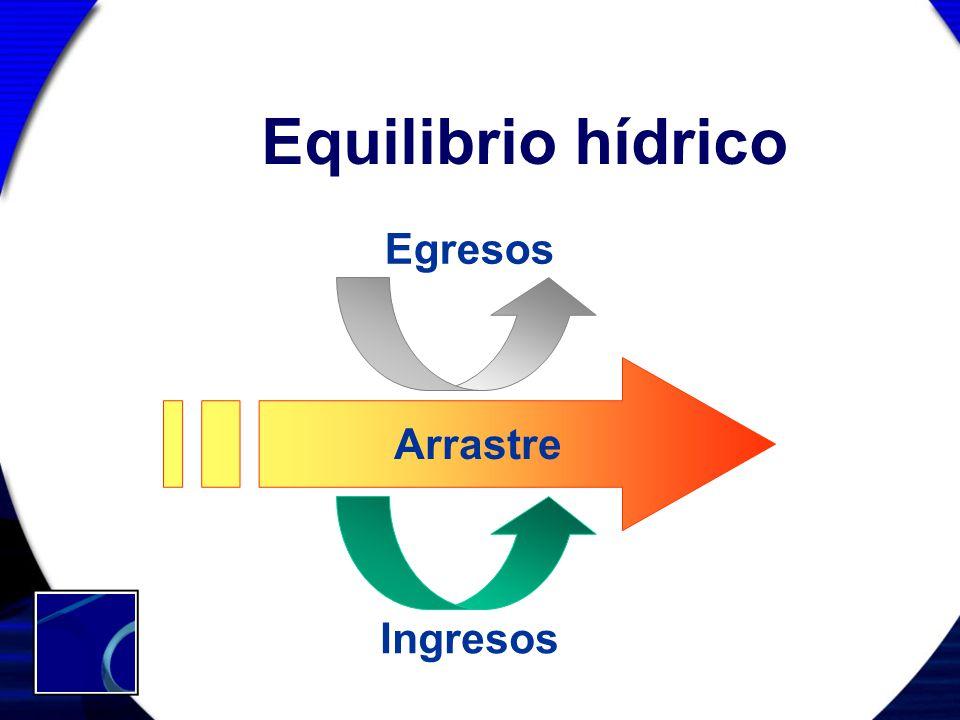 Equilibrio hídrico Egresos Arrastre Ingresos