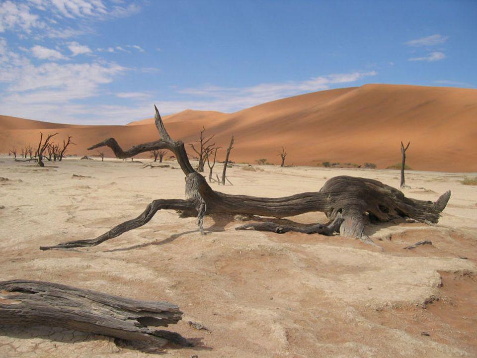 Desierto de Sossusvlei, Namibia