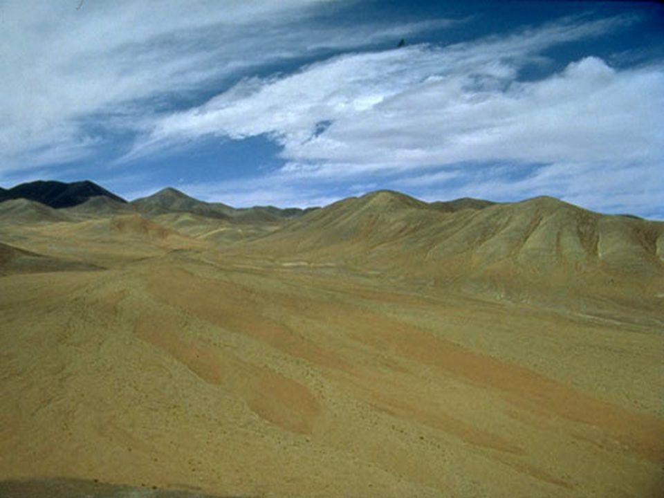 El Desierto de Atacama es el desierto más árido del mundo; se extiende por el norte de Chile y la franja costera del Perú. Se sitúa, más o menos, sobre el Trópico de Capricornio, al igual que el Desierto del Kalahari, o que el Gran Desierto de Australia.