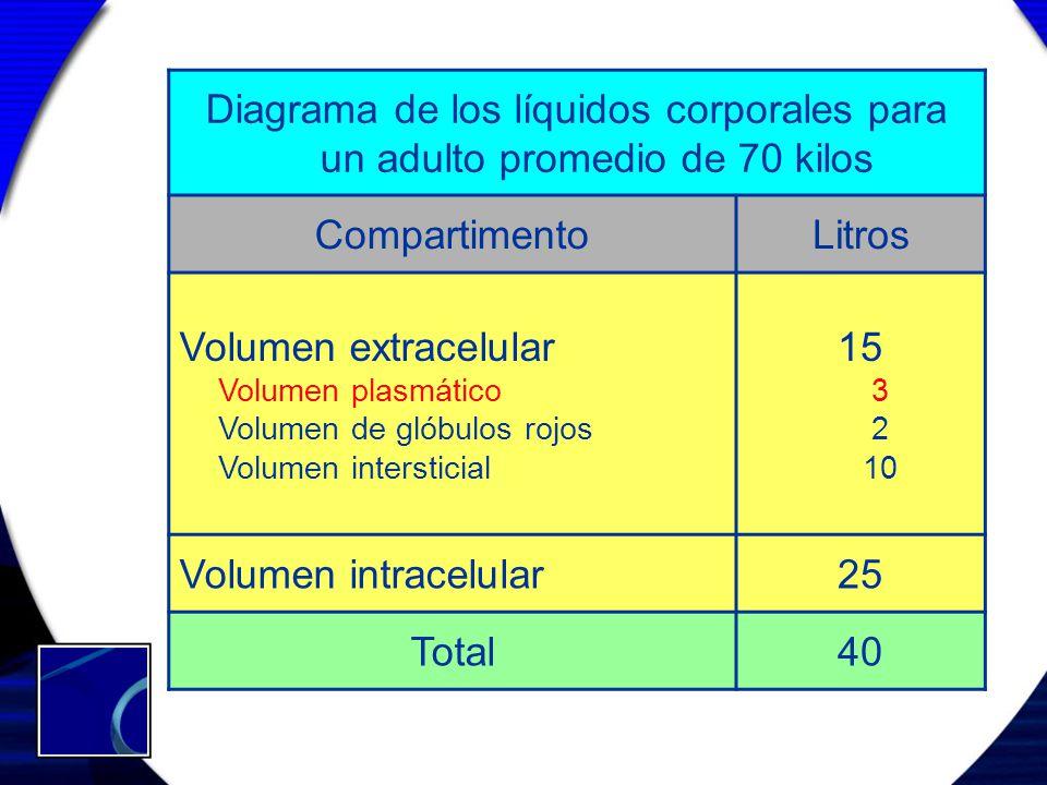 Diagrama de los líquidos corporales para un adulto promedio de 70 kilos