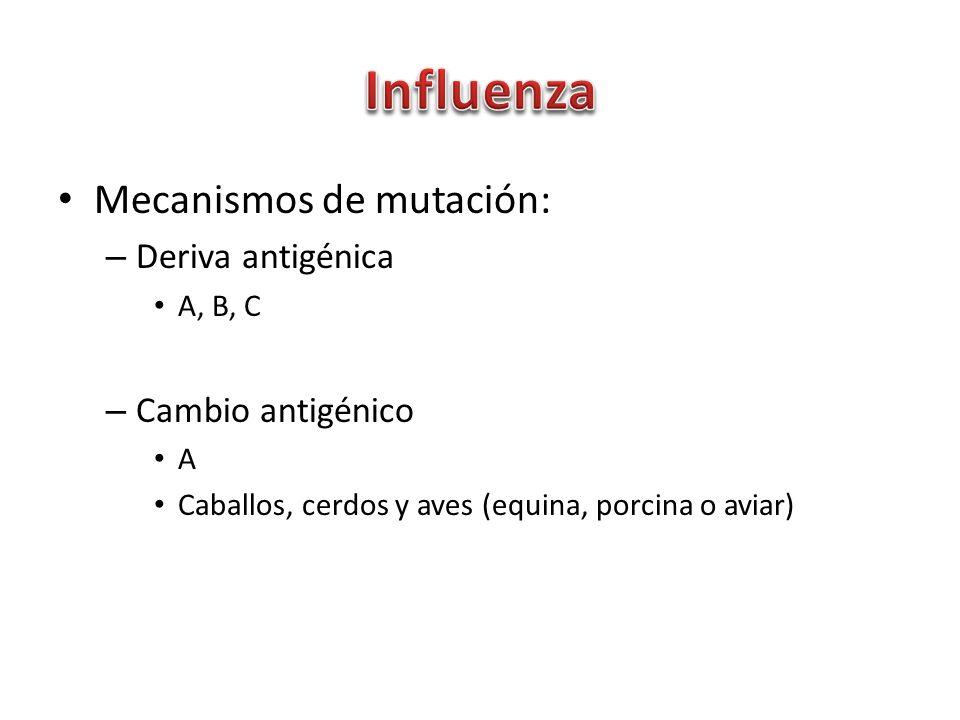 Influenza Mecanismos de mutación: Deriva antigénica Cambio antigénico