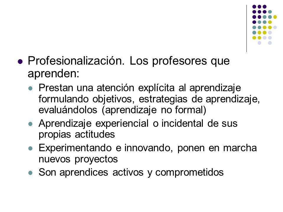 Profesionalización. Los profesores que aprenden: