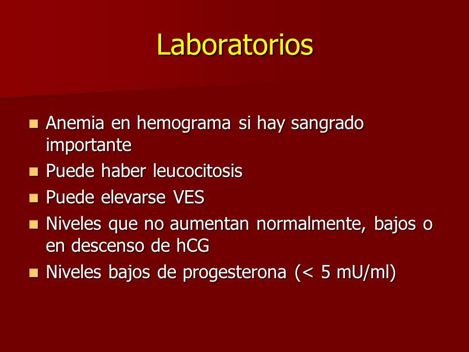 Laboratorios Anemia en hemograma si hay sangrado importante