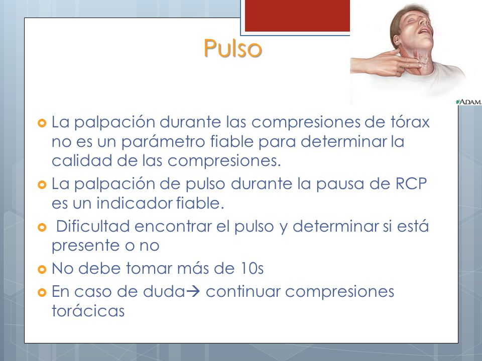 Pulso La palpación durante las compresiones de tórax no es un parámetro fiable para determinar la calidad de las compresiones.