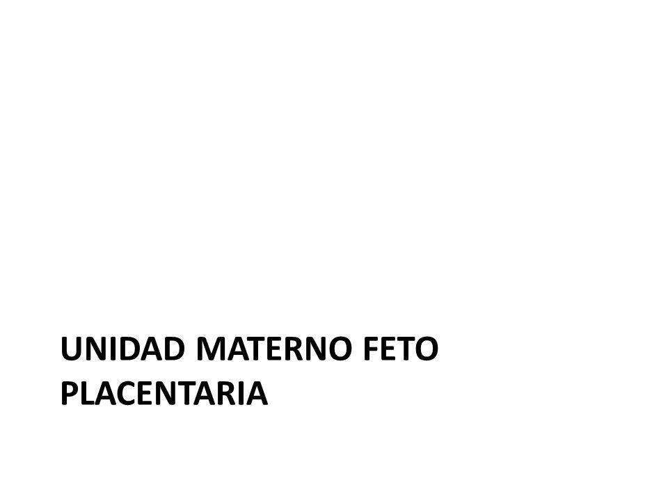 Unidad materno feto placentaria