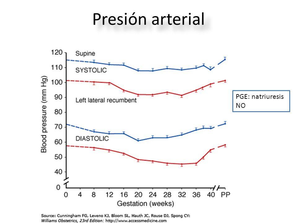 Presión arterial PGE: natriuresis NO