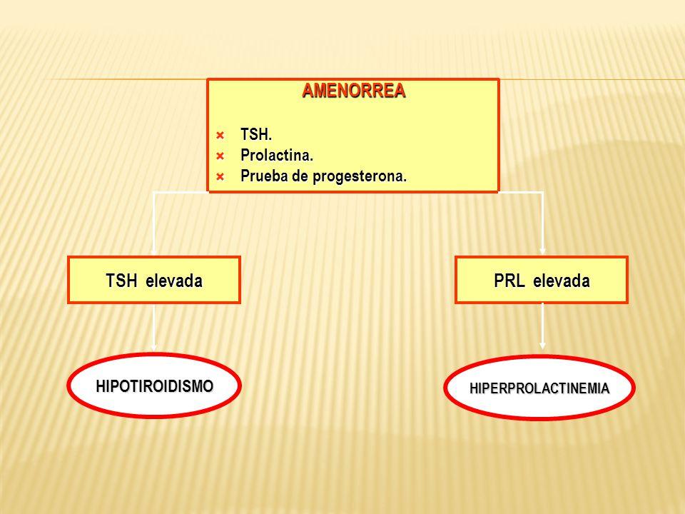 AMENORREA TSH elevada PRL elevada