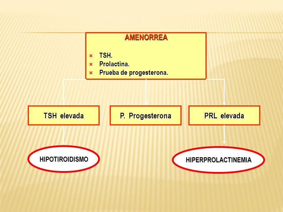 AMENORREA TSH elevada P. Progesterona PRL elevada