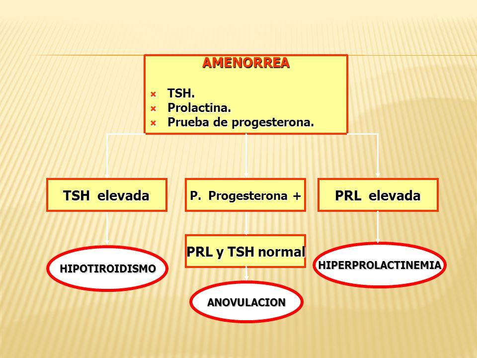 AMENORREA TSH elevada PRL elevada PRL y TSH normal