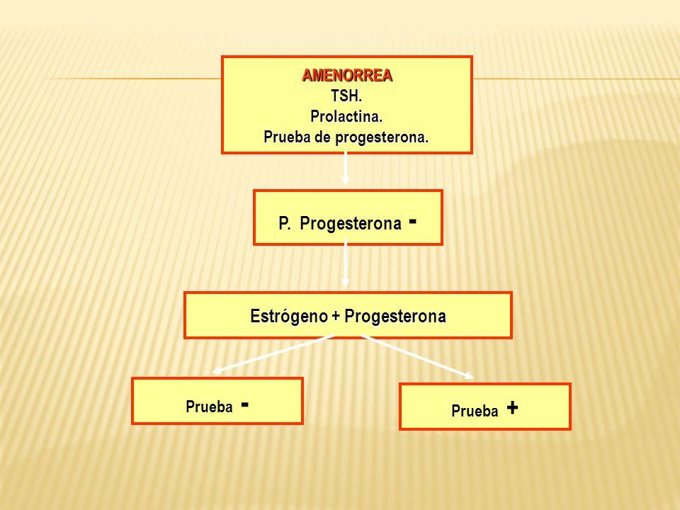 Prueba de progesterona. Estrógeno + Progesterona