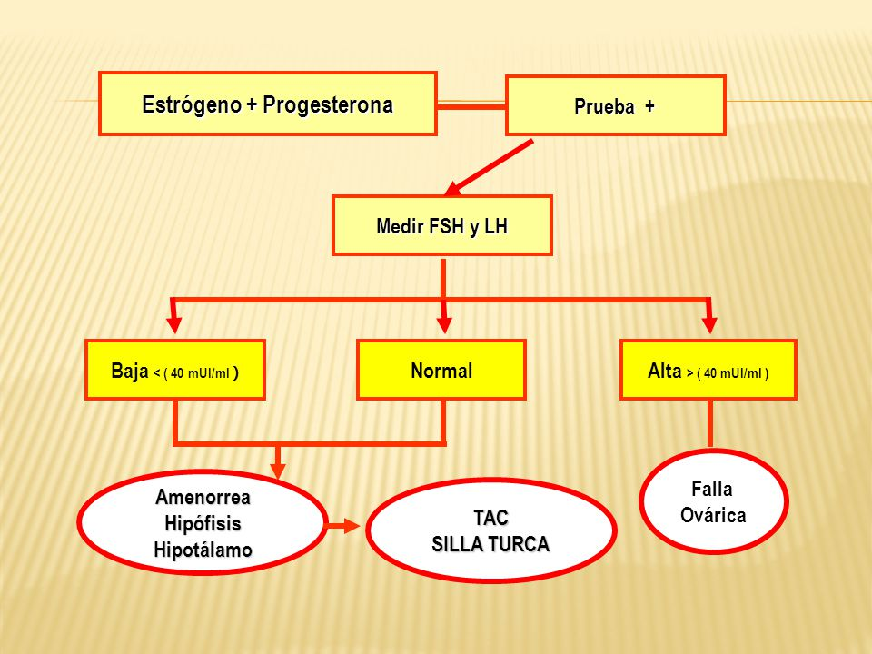 Estrógeno + Progesterona