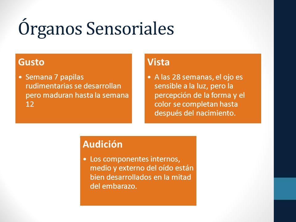 Órganos Sensoriales Gusto Vista Audición