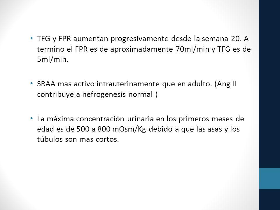 TFG y FPR aumentan progresivamente desde la semana 20