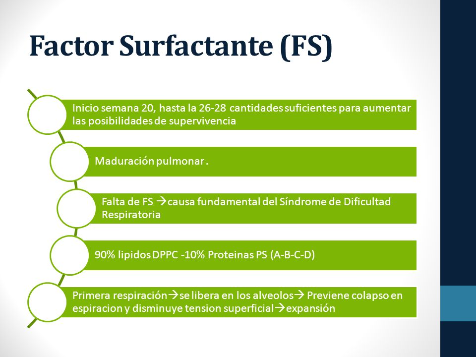 Factor Surfactante (FS)
