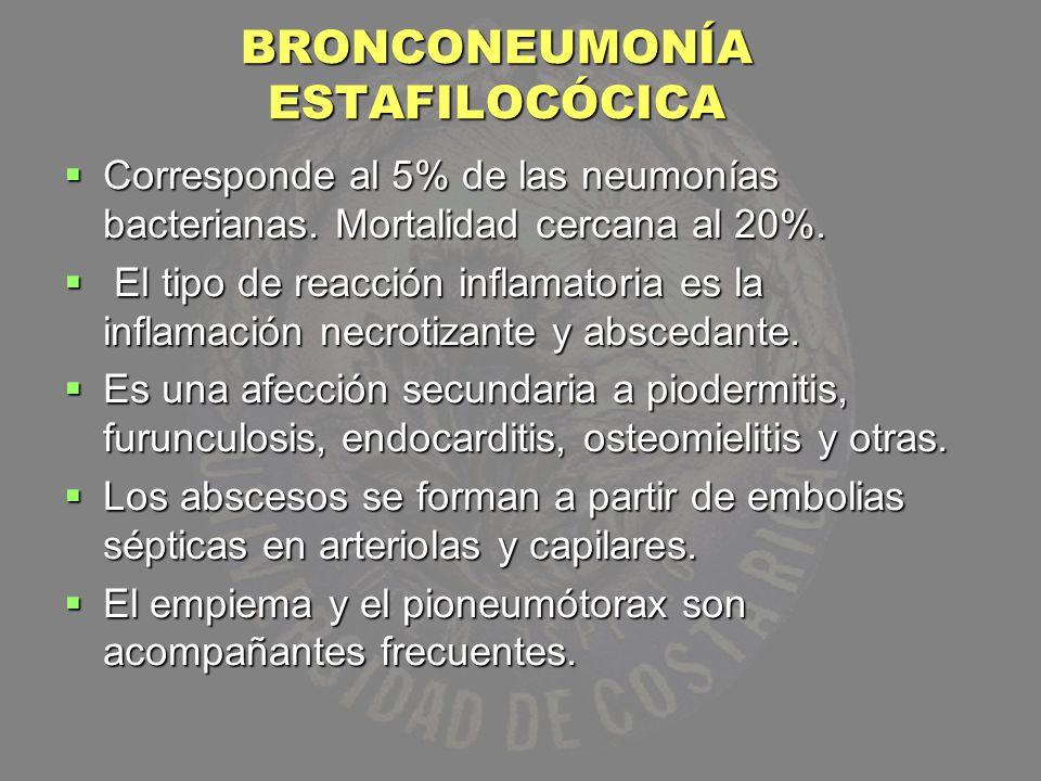 BRONCONEUMONÍA ESTAFILOCÓCICA