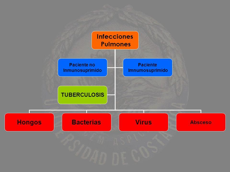 Infecciones Pulmones Hongos Bacterias Virus TUBERCULOSIS Absceso