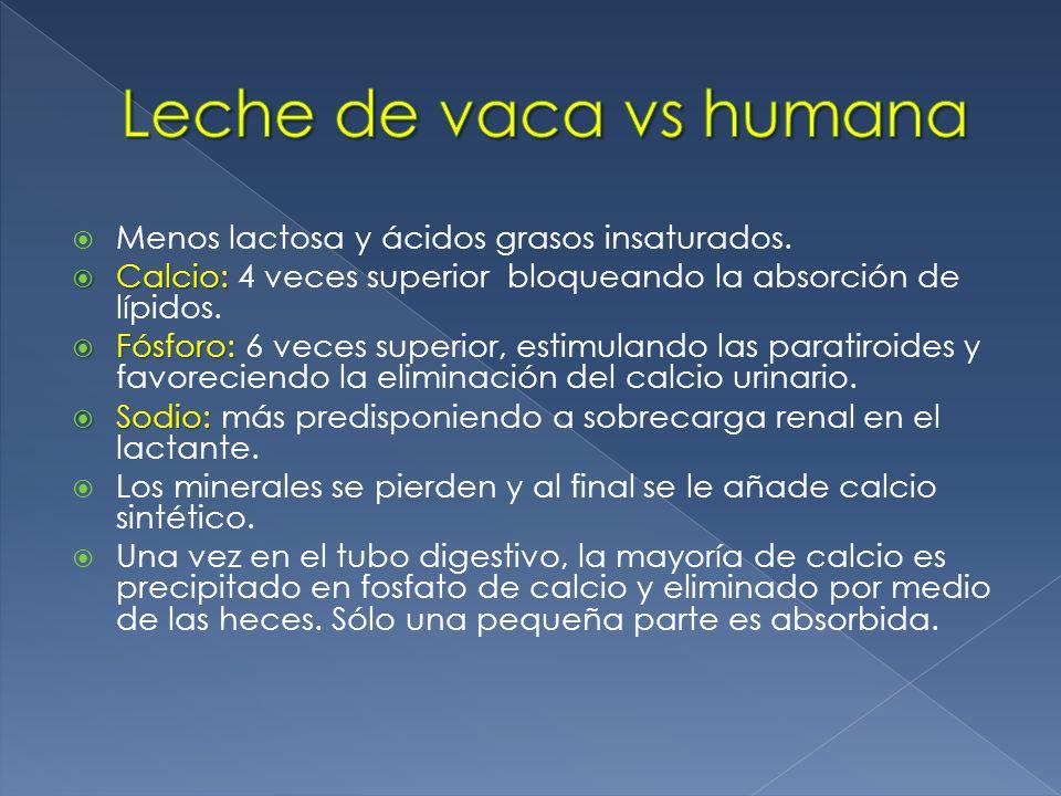 Leche de vaca vs humana Menos lactosa y ácidos grasos insaturados.
