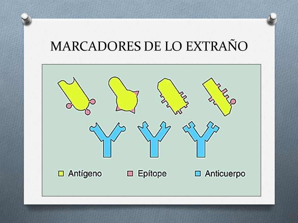 MARCADORES DE LO EXTRAÑO